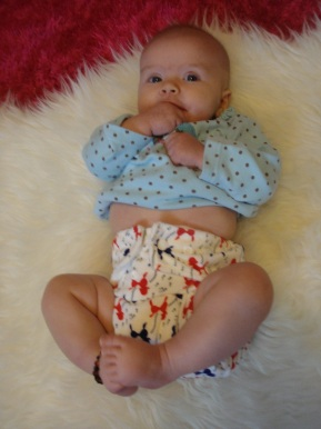 Review: KaWaii Cloth Diapers