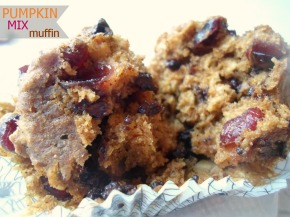 Pumpkin Mix Muffins